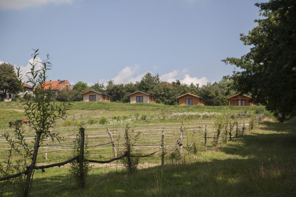 Widok na nasze domki